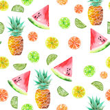 Modèle avec les fruits glacés d'aquarelle, l'ananas, la chaux et la pastèque colorés Photos libres de droits