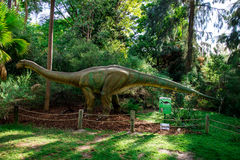 Modèle d'affichage d'Apatosaurus dans le zoo de Perth Photo stock