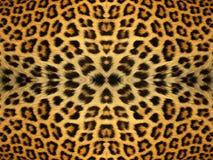 Modèle de fourrure de léopard Images libres de droits