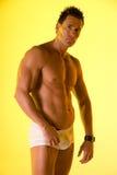 Modèle de sous-vêtements. Photos stock