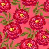 Modèle sans couture avec des fleurs de pivoine Bourgeons et feuilles lumineux Images libres de droits