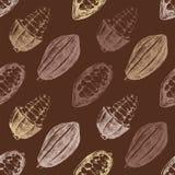 Modèle sans couture avec des graines de cacao Photos libres de droits