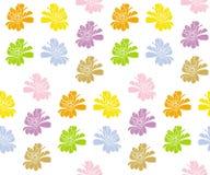 Modèle sans couture coloré de Zinnia (Vecteur) Images stock