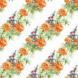 Modèle sans couture de floraison de fleurs de beau d'aquarelle jardin d'été Photographie stock libre de droits