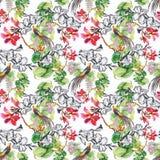 Modèle sans couture de floraison de fleurs de beau d'aquarelle jardin d'été Image libre de droits