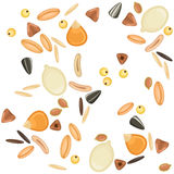 Modèle sans couture de grains de céréales Photo libre de droits