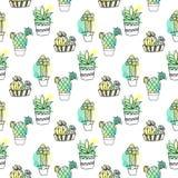 Modèle sans couture de vecteur avec le cactus Le fond coloré avec l'aquarelle éclabousse et des cactus Collection succulente Images stock