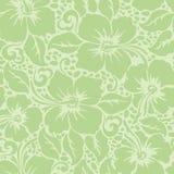 Modèle sans couture floral de ketmie hawaïenne tropicale Photographie stock libre de droits