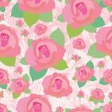 Modèle sans couture sale de Rose Photo stock