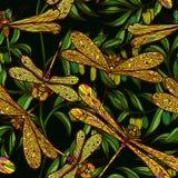 Modèle tiré par la main sans couture avec des libellules Image stock