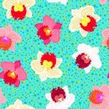 Modèle tropical floral avec des fleurs d'orchidée Photographie stock