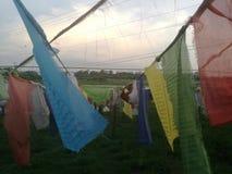 Modlitwa Chorągwiany Nepal Lumbini fotografia stock