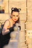 Modna dziewczyna w kot sukni Obraz Royalty Free