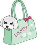 Modna przewożenie torba dla małych psów obrazy royalty free