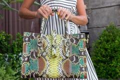 Modnej kobiety mienia snakeskin pytonu luksusowa torba Elegancki strój Zamyka up kiesa w rękach elegancka dama model zdjęcie stock