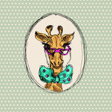 Modniś żyrafa Zdjęcia Stock