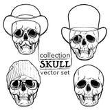 Modniś stylowa czaszka ustawia odosobnionego na białym BG Obraz Stock
