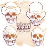 Modniś stylowa czaszka ustawiająca na grunge BG Fotografia Stock