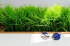Modni błękitni okulary przeciwsłoneczni na bielu stole na jaskrawym - zielonej trawy tło Fotografia Stock