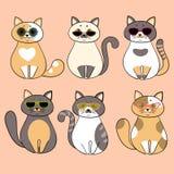 Modni poważni koty z okularami przeciwsłonecznymi Royalty Ilustracja