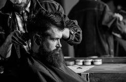 Modnisia klient dostaje ostrzyżenie Fryzjera męskiego tytułowania włosy brodaty klient z gręplą i cążki Fryzjer męski z włosianym zdjęcia stock