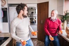 Modnisia syn z jego starszym ojcem w kuchni Zdjęcia Stock