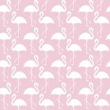 Modny menchii i bielu flaminga bezszwowy wzór royalty ilustracja