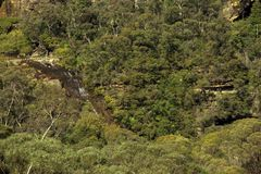 Modo al passaggio nazionale vicino a Wentworth Falls guardando dall'allerta di Fletchers, vicino a Katoomba, montagna blu, Sydney Fotografie Stock