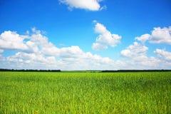 In modo bello paesaggio Fotografia Stock Libera da Diritti