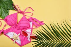 Modo del bikini del costume da bagno di estate Fotografie Stock Libere da Diritti