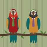 Modo del pappagallo Fotografia Stock