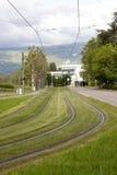 Modo del tram dell'erba Fotografie Stock Libere da Diritti