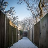 Modo del vicolo con i recinti di legno e gli alberi coperti in neve Fotografie Stock Libere da Diritti