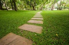 Modo della camminata nel giardino Fotografie Stock