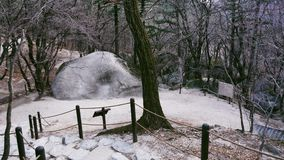 Modo della foresta nel parco nazionale di Seoraksan Fotografia Stock