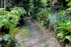 Modo della passeggiata fatto dalla pietra porosa rossa nel gardent Fotografia Stock