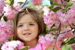 Modo della ragazza di estate Infanzia felice Bambina in molla soleggiata Piccolo bambino Bellezza naturale Il giorno dei bambini fotografie stock
