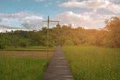 Modo di camminata di legno sopra il campo verde Fotografie Stock