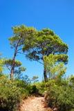 Modo di Lycian vicino a Kalkan immagini stock libere da diritti