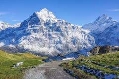 Modo di pietra della passeggiata alla montagna con neve, erba verde ed il blu della radura Fotografia Stock
