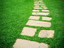 Modo di pietra della passeggiata del blocco in giardino Immagine Stock