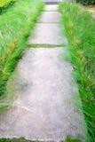Modo di pietra della passeggiata del blocco in giardino Fotografia Stock