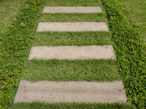 Modo di pietra della passeggiata del blocco in giardino con erba verde Fotografie Stock Libere da Diritti