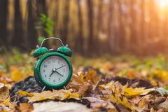 Modo do outono Bom dia A natureza acorda Mude a estação De volta à escola imagem de stock