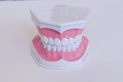 Modo dos dentes Fotografia de Stock Royalty Free