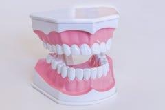 Modo dos dentes Imagens de Stock