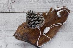 Modo eccentrico ascoltare musica Concetti - collegamento nella natura, prospettiva diversa per usare la tecnologia, immaginazione immagini stock