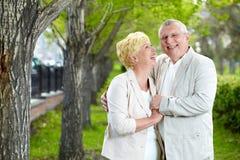 Modo feliz Imagens de Stock Royalty Free