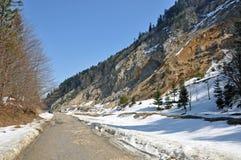 Modo pieno di sole alpino fotografia stock libera da diritti