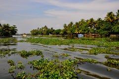 Modo tropicale dell'acqua Fotografia Stock Libera da Diritti